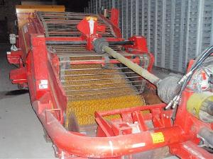 Buy Online Stone cleansers Grimme megastar  second hand