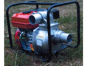 Offers Irrigation Pumps Triunfo pt30 used