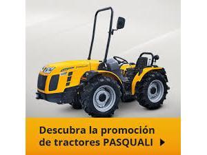 Verkauf von Repuestos de Motores PASCUALI  gebrauchten Landmaschinen
