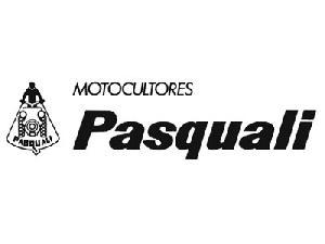 Venda de Peças sobresselentes para máquinas agrícolas Pasquali pascuali usados